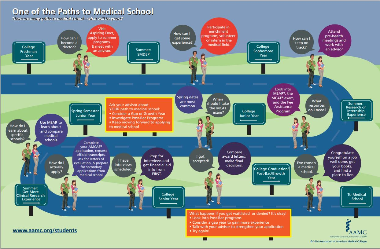 Education Path To Medical School