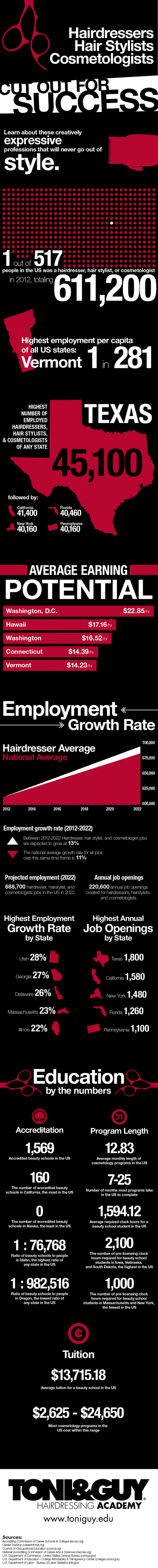 Hairdressers, Hair Stylists and Cosmetologists Career Infographic
