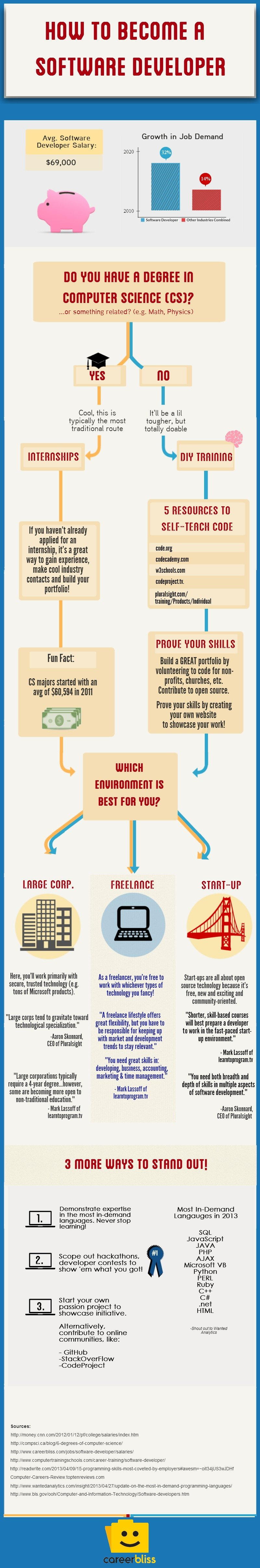 How To Become A Software Developer Infographic