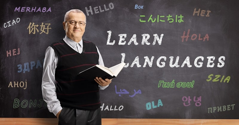 pros and cons of being a Postsecondary Foreign Language and Literature Teacher