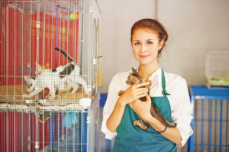 pros and cons of being an Animal Caretaker
