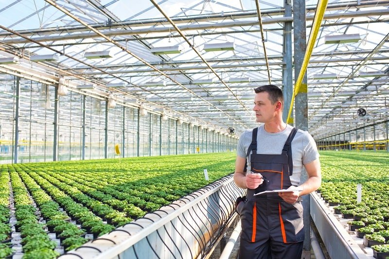 Nursery and Greenhouse Managers